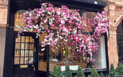 Creed Boutique Spring Window 2018